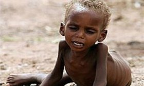 free-bible-studies-online-starvation-africa