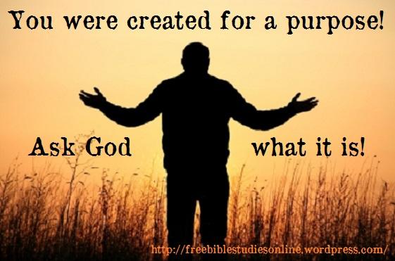 free-bible-studies-online-created-purpose