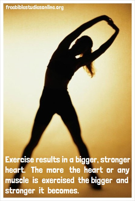 free-bible-studies-online-exercise results in a bigger, stronger heart