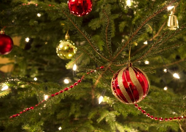 free-bible-studies-online-activated-christmas-in-the-air
