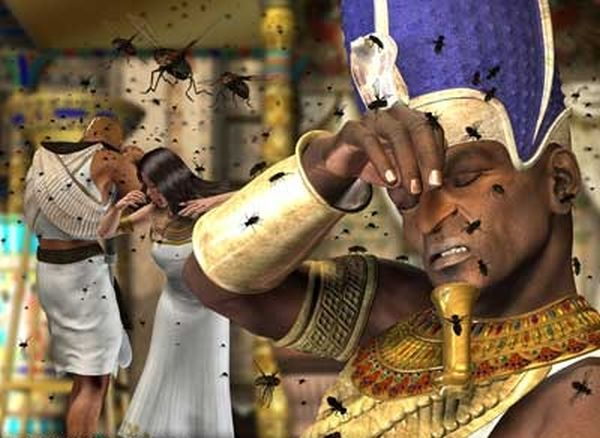 free-bible-studies-online-activated-the-plagues-of-egypt