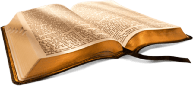 free-bible-studies-online-the-word