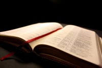 free-bible-studies-online-bible-topics